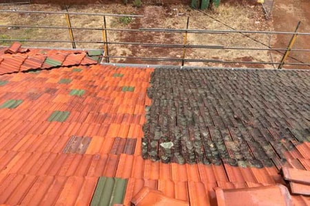 services-roof-cleaing